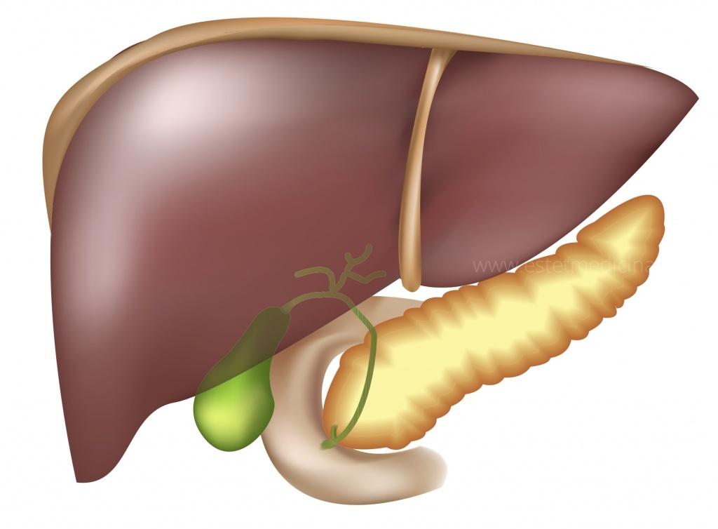 Вирусные инфекции гепатиты